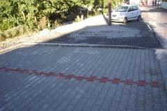 IMGP2445